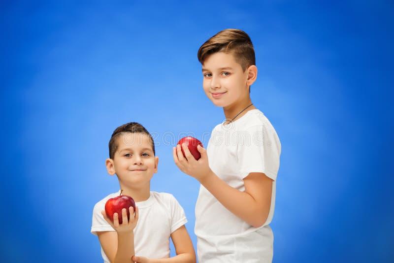 英俊的小男孩用两个红色苹果 在蓝色背景的演播室画象 免版税库存照片