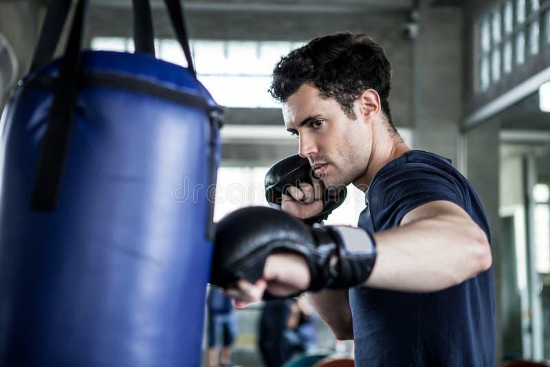 英俊的年轻人拳击手行使与一个吊袋在训练健身健身房 男性把装箱的锻炼体育 免版税库存图片