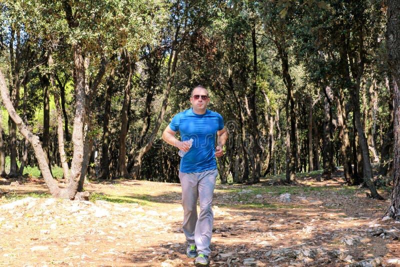 英俊的年轻跑在夏天森林年轻运动员男性训练的足迹的人赛跑者越野 免版税库存图片