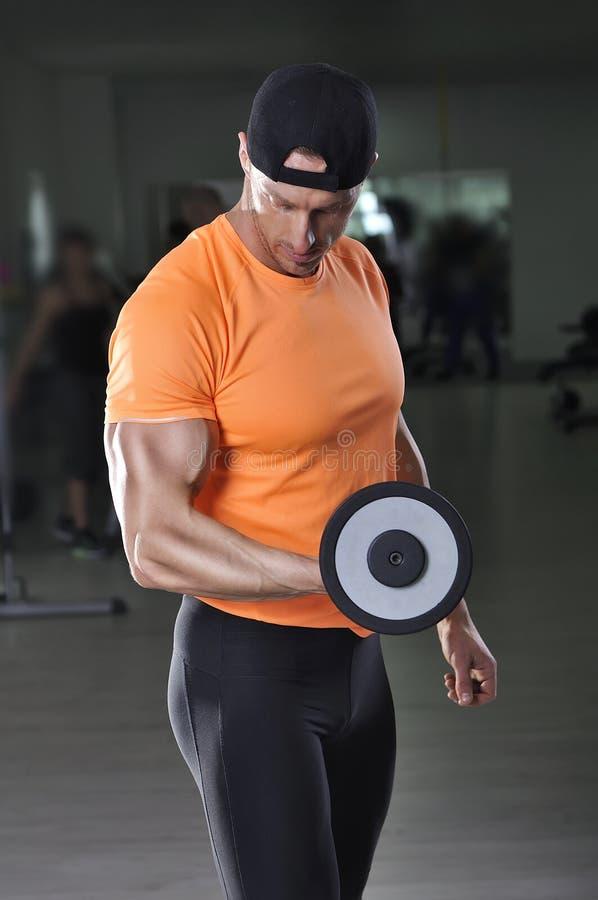 英俊的强有力的运动人执行的二头肌行使与哑铃 免版税库存照片