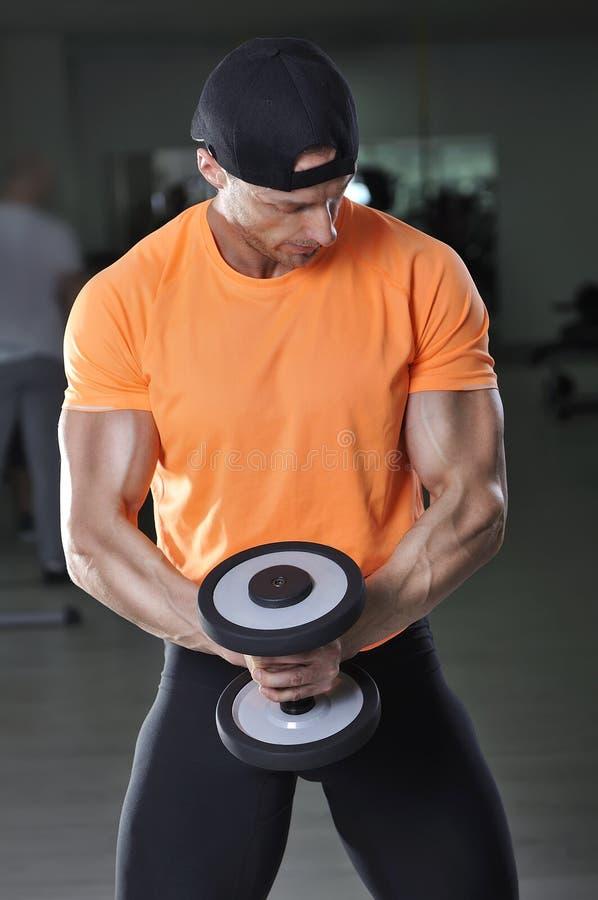 英俊的强有力的运动人执行的二头肌行使与哑铃 库存图片