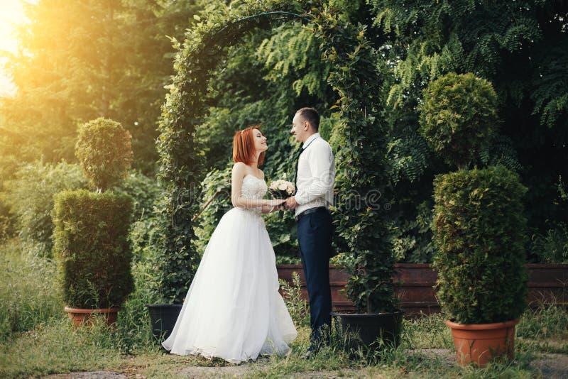英俊的新郎拿着bride& x27; 在绿色花拱道附近的s手 库存图片