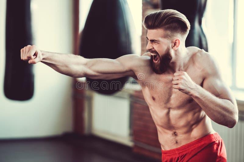 英俊的有胡子的拳击手 库存照片