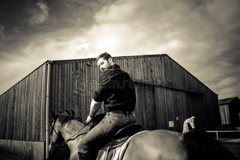 英俊的牛仔,在马鞍,马背adn起动的马车手 免版税库存图片