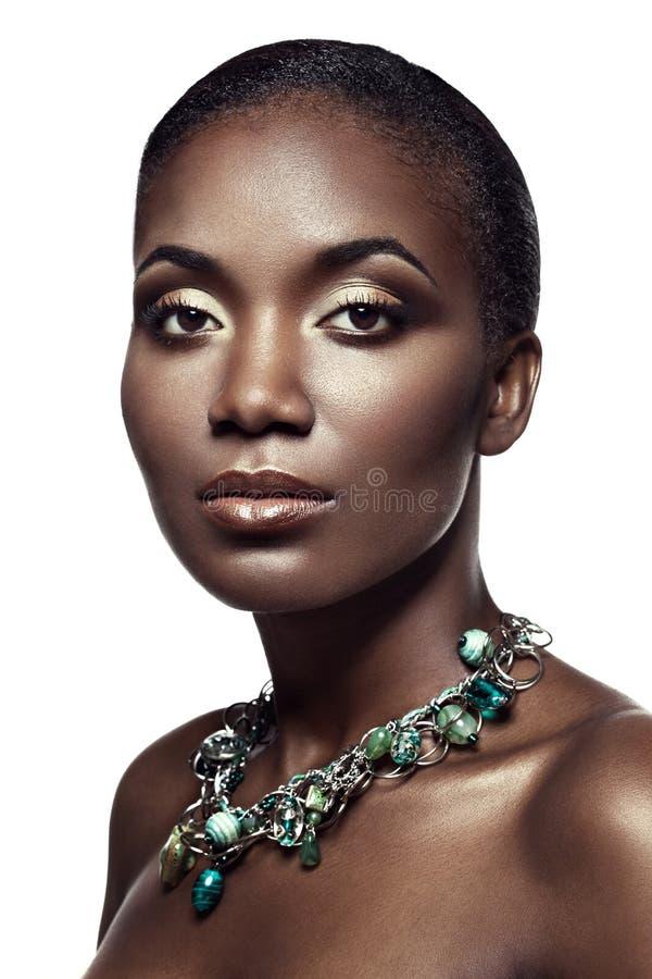 英俊的种族非洲女孩秀丽画象,隔绝在whi 库存图片