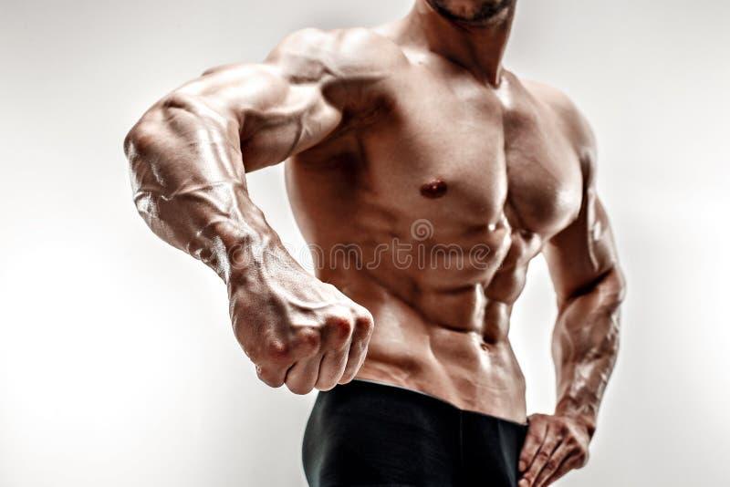 英俊的肌肉爱好健美者展示他的拳头和静脉,血管 在空白背景射击的工作室 库存图片