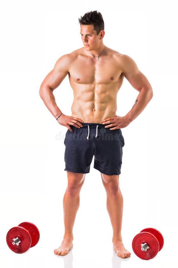 英俊的肌肉赤裸上身的年轻人藏品 免版税库存照片