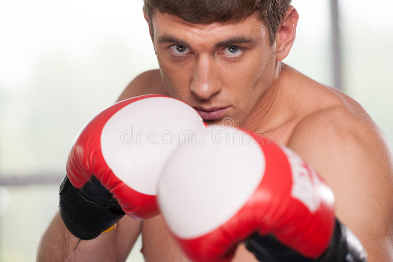 英俊的肌肉年轻人佩带的拳击手套 免版税库存图片