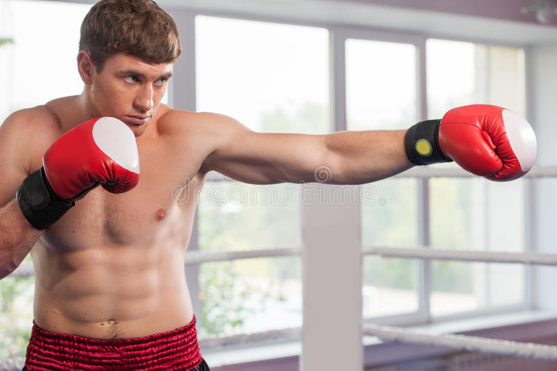 英俊的肌肉年轻人佩带的拳击手套 免版税库存照片
