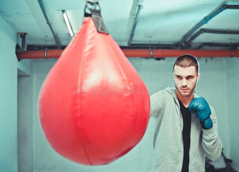 英俊的被集中的男性拳击手训练手动打孔机 库存照片