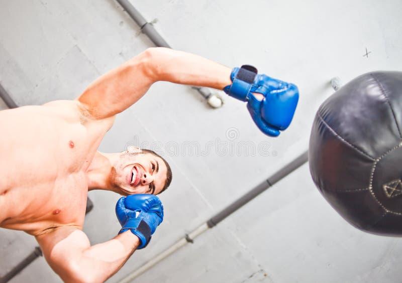 英俊的smilling的体育人拳击手 图库摄影