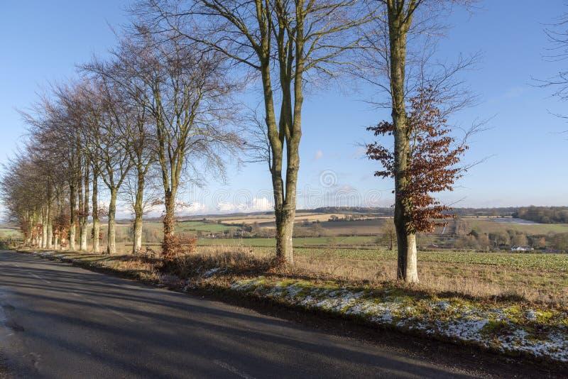 英国乡下在汉普郡,英国南部 库存照片