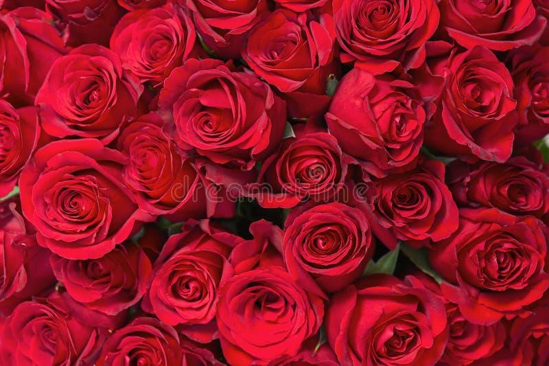 从英国兰开斯特家族族徽的五颜六色的花花束为作为背景的使用 免版税库存照片