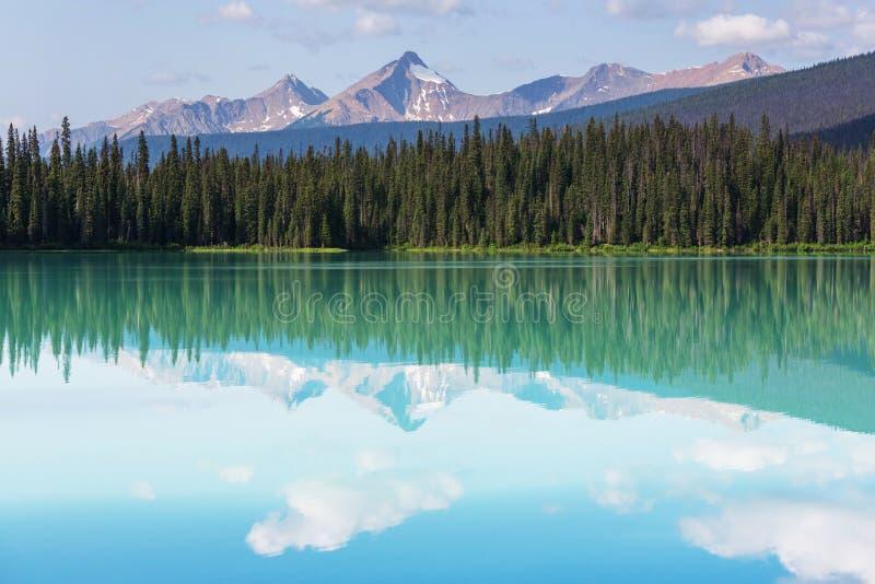 英国加拿大哥伦比亚鲜绿色湖找出国家公园yoho 库存照片