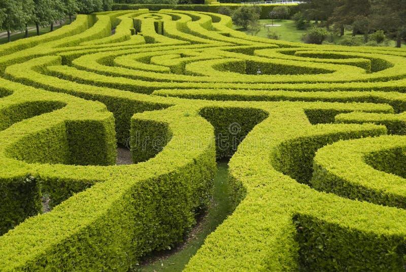 英国国家庭院迷宫 免版税库存照片