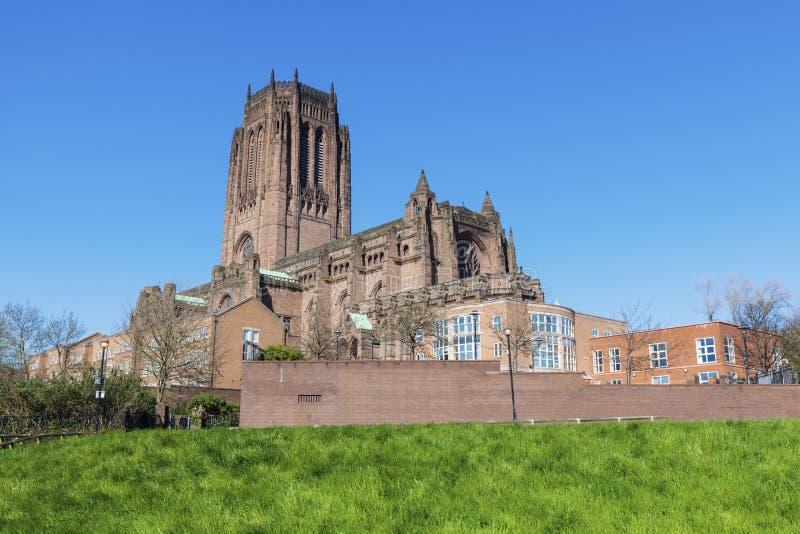英国国教大教堂利物浦 库存照片