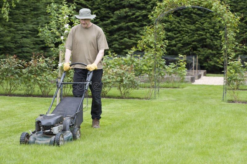 英国夏季人工割草割草机 库存图片