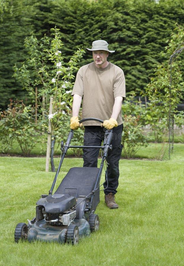 英国夏季在花园割草 库存图片
