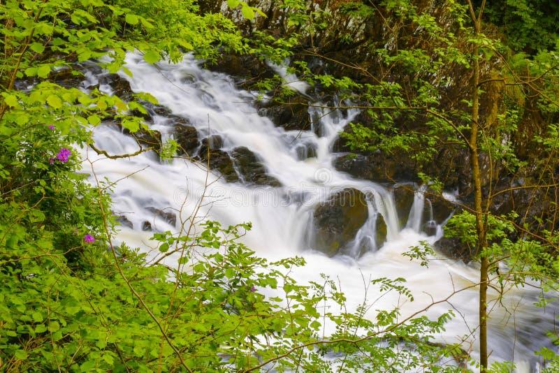 英国威尔士燕子瀑布 免版税库存图片
