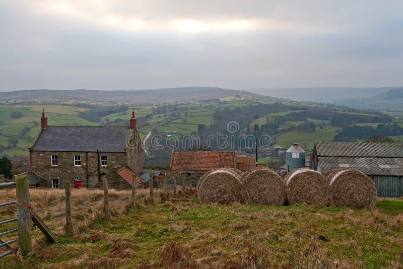 英国村庄约克 库存图片