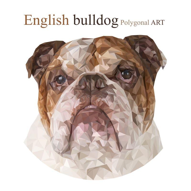 英国牛头犬 多角形图画 向量例证