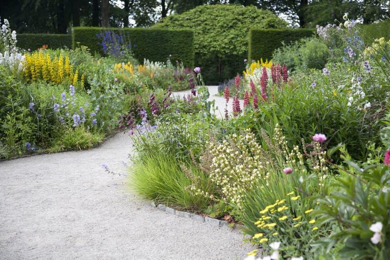 英国草本庭院边界 图库摄影