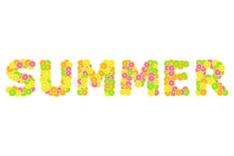 英国词夏天 柑橘热带印刷品组成由黄色柠檬、绿色石灰、粉红色葡萄柚和桔子在白色背景 皇族释放例证