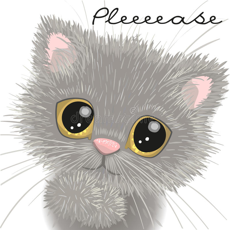 英国逗人喜爱的小猫 库存例证