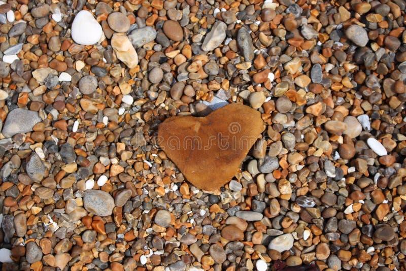 英国,光,风景,海洋,岩石,惊人的地方小岛  免版税库存照片