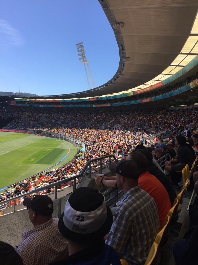 英国v新西兰世界杯 免版税图库摄影