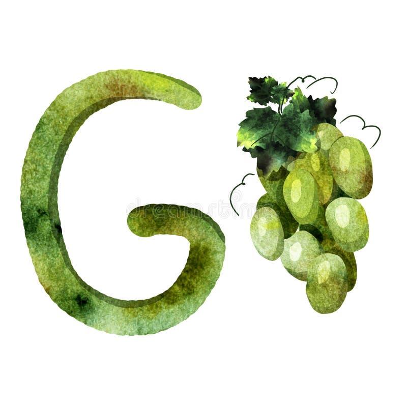 英语字母表信件g 库存图片