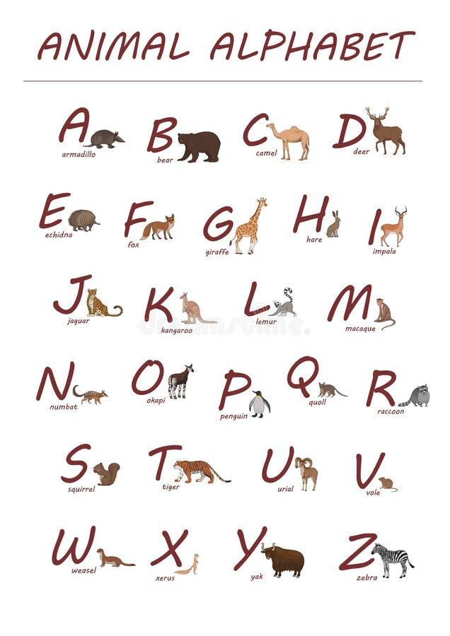 英语字母表 红色在白色背景在动画片样式隔绝的信件和手拉的动物 皇族释放例证