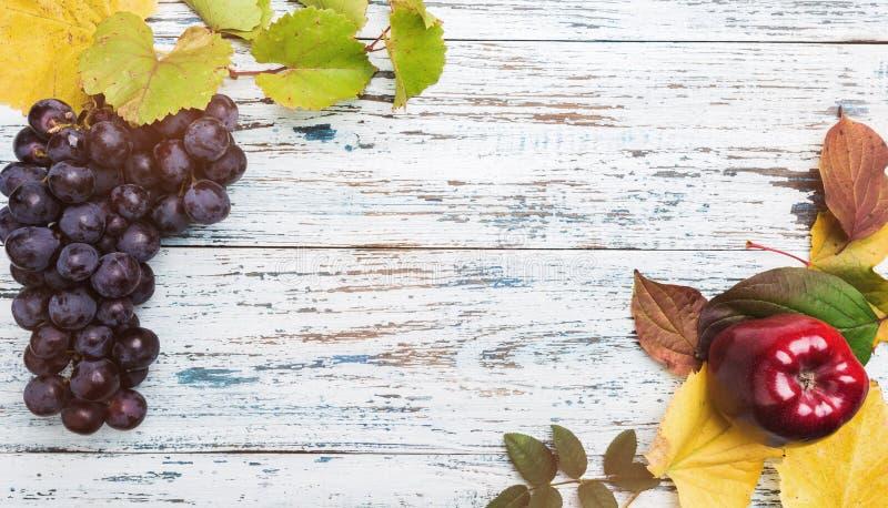 苹果、五颜六色的叶子和葡萄秋天果子的概念在一张青白的木桌,顶视图上 库存图片