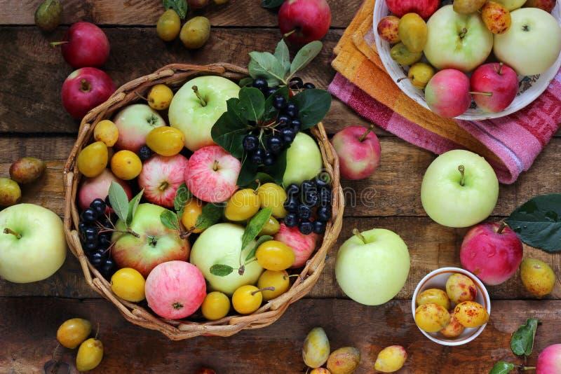 苹果、李子和山脉灰在桌,顶视图上 库存照片