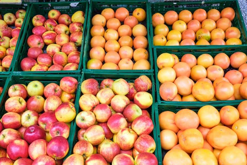 苹果、桔子和葡萄柚 库存照片