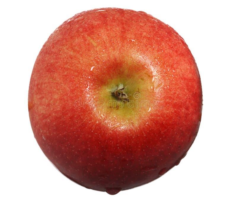 苹果丢弃红顶视图水 免版税库存照片