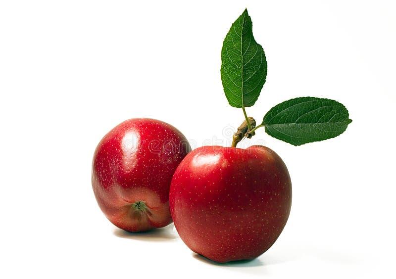 苹果二 免版税库存照片