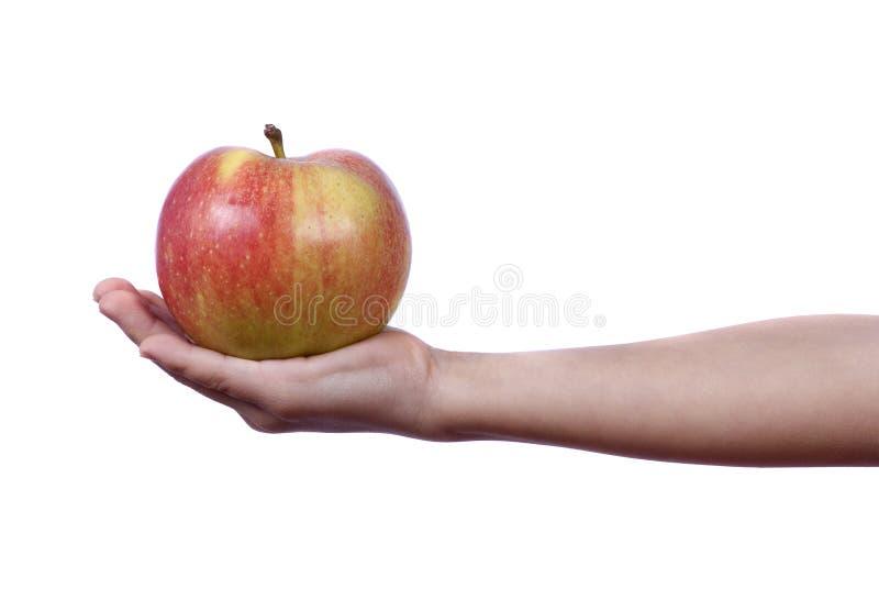 苹果产生 免版税库存图片