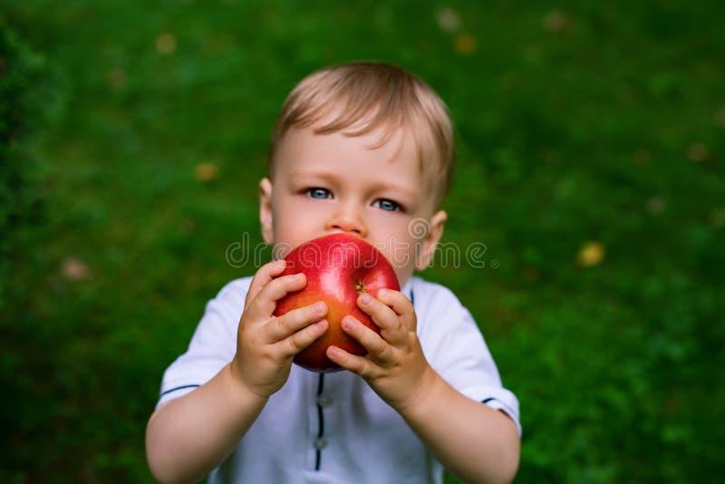 苹果儿童吃 免版税库存照片