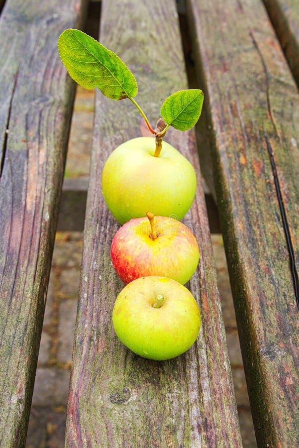 苹果制表木 免版税图库摄影