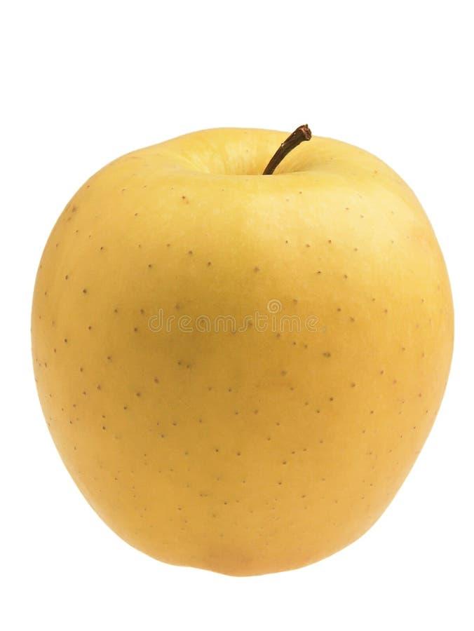 苹果可口金黄 库存照片