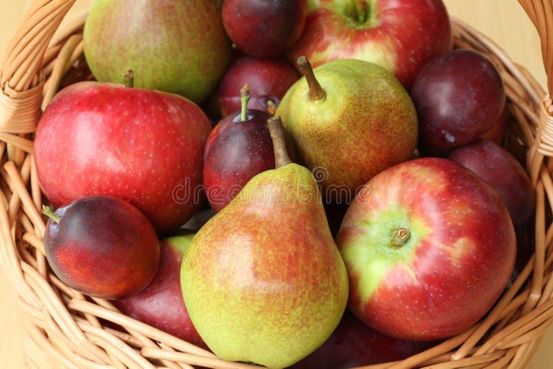 苹果和梨 免版税库存照片