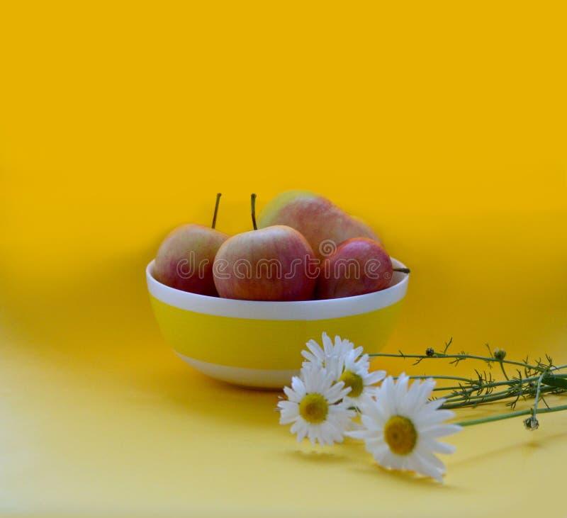 苹果和雏菊在明亮的背景 免版税库存照片