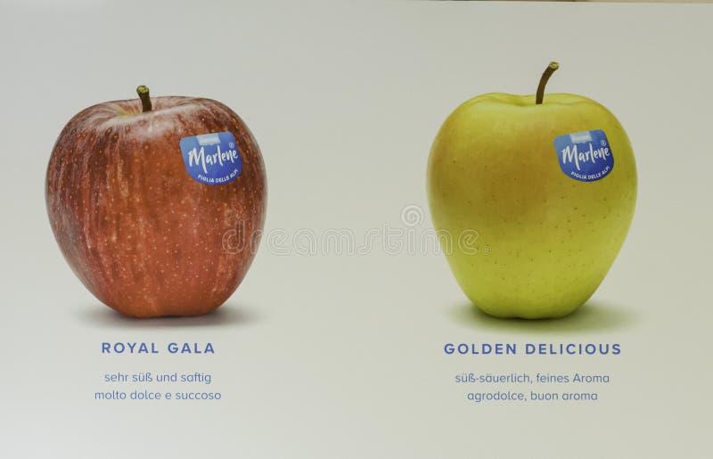 苹果品种 库存照片