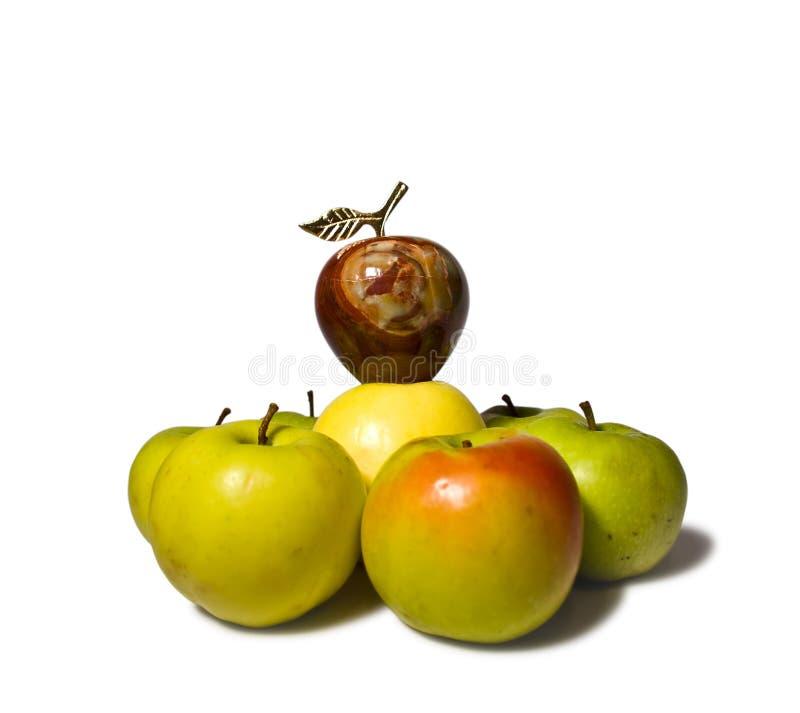 苹果层次结构 免版税库存照片