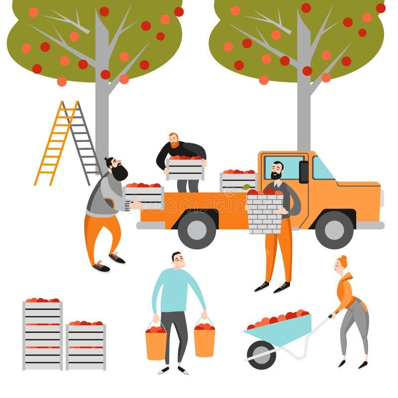 苹果庭院地面收获成熟时间结构树 愉快的人民在庭院里摘苹果 滑稽的漫画人物  库存例证