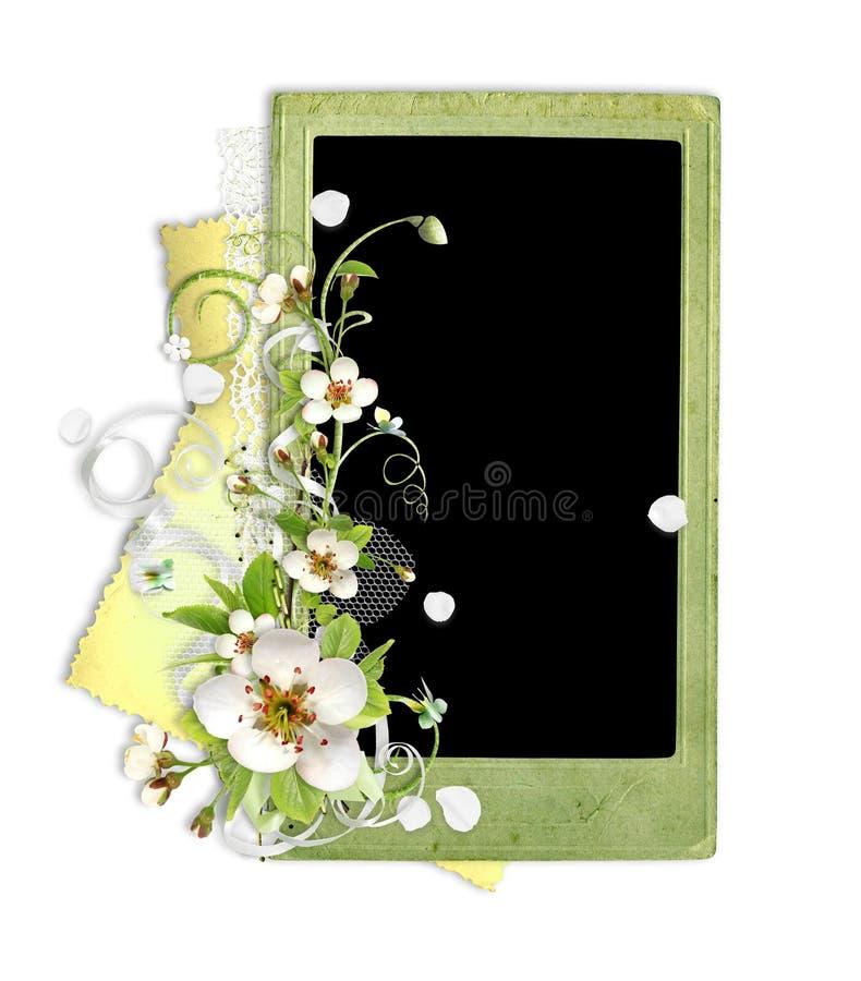 苹果开花框架绿色结构树 库存例证