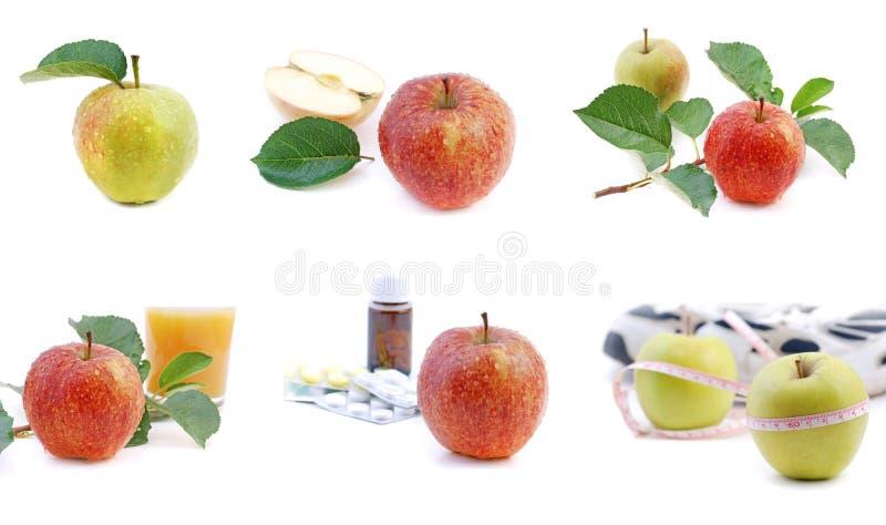 苹果收集 免版税库存照片