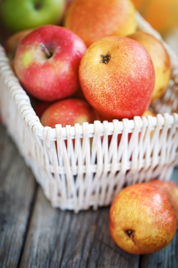 苹果新收获 日愉快的感恩 收获节日 秋天背景特写镜头上色常春藤叶子橙红 库存照片