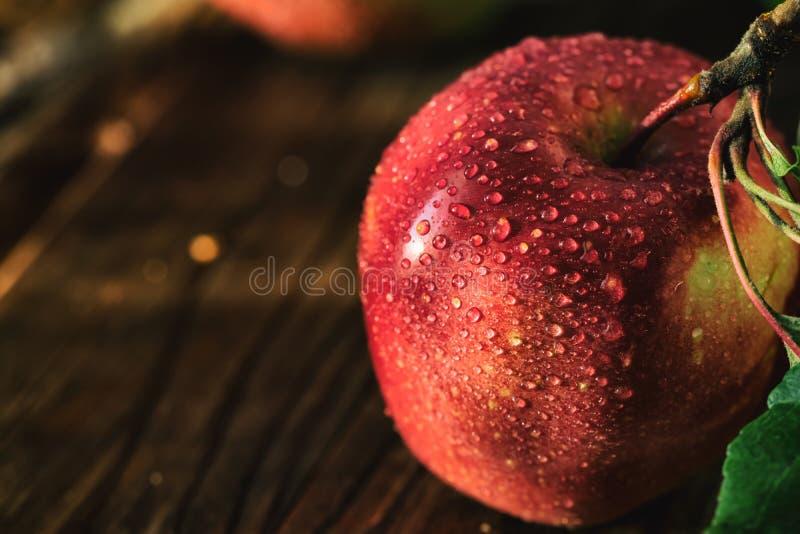 苹果新收获 自然题材用在木背景的红葡萄 图库摄影